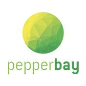 cabinet-conseil-cybersécurité-peperbay